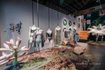 青色atelier intimo,一衣一带尽显优雅 青色atelier intimo,2020线下媒体见面会